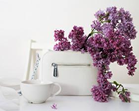 Картинка Сумка Сирень Чашка