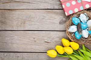Картинки Праздники Тюльпаны Пасха Яйца Гнездо Доски