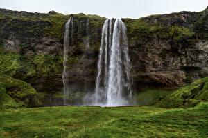 Картинки Исландия Водопады Утес Мох Seljaland Waterfall