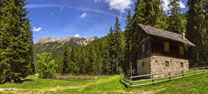 Фотографии Италия Леса Здания Ограда Ель Bolzano Природа