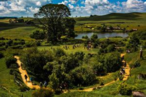 Фото Новая Зеландия Парки Пруд Кусты Деревья Matamata Hobbiton Природа