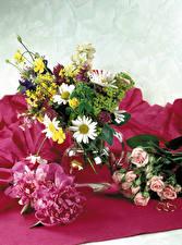Обои Пионы Розы Ромашки Ваза