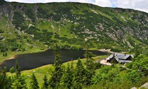 Картинка Польша Озеро Здания Ель Karpacz Lower Silesia Природа