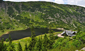 Картинка Польша Озеро Дома Ель Karpacz Lower Silesia Природа