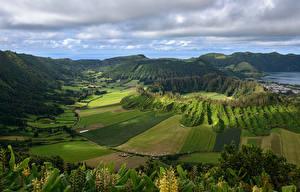 Картинки Португалия Пейзаж Поля Леса Холмы Azores Природа