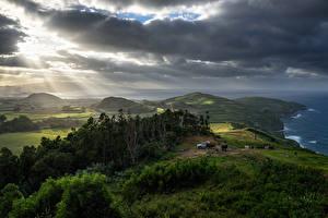 Фотографии Португалия Пейзаж Поля Луга Облака Холмы Деревья Лучи света Azores