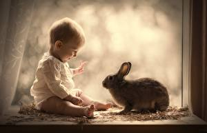 Фотографии Кролики Грудной ребёнок Окно Сидящие Дети
