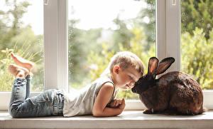 Фото Кролики Окно Мальчики Джинсы Милые Ребёнок