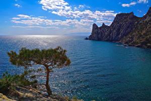 Фотографии Россия Крым Море Пейзаж Небо Утес Деревья Облака Yalta Природа