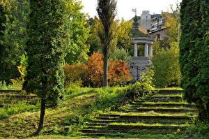 Картинка Россия Москва Сады Лестница Деревья Botanical garden Природа