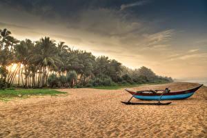 Картинка Шри-Ланка Тропики Побережье Лодки Песок Пальмы Пляж Induruwa Природа