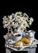 Фотографии Натюрморт Букеты Ромашки Круассан Черный фон Чашка Яйца Пища Цветы