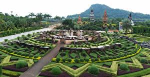 Фото Таиланд Тропики Парки Ландшафтный дизайн Кусты Nong Nooch Tropical Botanical Garden Природа