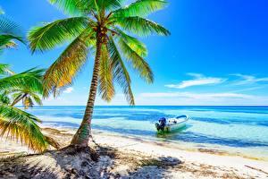 Фотографии Тропики Море Лодки Пальмы Пляж Деревья Природа