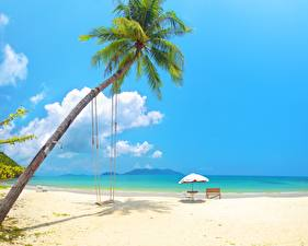 Фотографии Тропики Море Пальмы Качели Пляж Природа