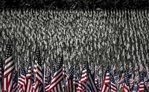 Фотографии Штаты Много Флаг Американские