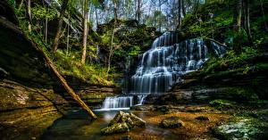 Фото Штаты Водопады Камень Мох Machine Falls Tullahoma Tennessee