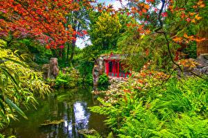 Картинка Великобритания Сады Пруд Пагоды Кусты Biddulph Grange Garden Природа