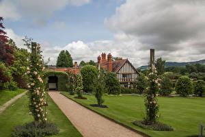 Фотографии Великобритания Сады Дизайн Кусты Газон Powis Castle Gardens