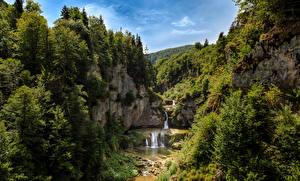 Картинки Водопады Леса Утес Деревья