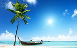 Картинки Лодки Небо Море Пальма Природа