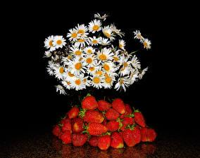 Обои Букеты Ромашка Клубника Черный фон Пища Цветы