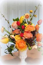 Картинки Букеты Роза Нарциссы Тюльпаны Ваза цветок