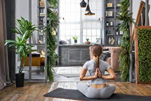 Обои Шатенка Йога Сидящие Спина Физические упражнения Девушки
