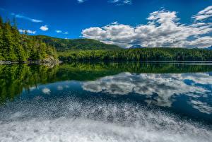 Фото Канада Озеро Леса Небо Облака Knight Inlet British Columbia Природа