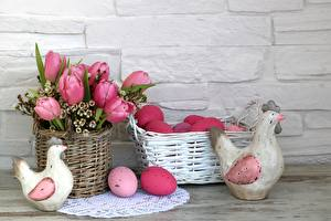 Обои Пасха Тюльпаны Курица Яйца Корзина Цветы