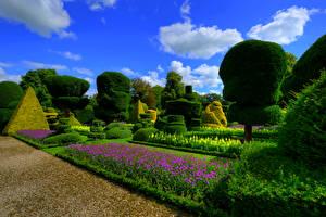 Фото Англия Сады Дизайн Кусты Газон Topiary Gardens Levens Hall