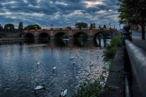 Фотография Англия Реки Мосты Вечер Лебеди Уличные фонари Worcester  River Severn