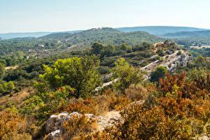 Картинки Франция Леса Холмы Provence