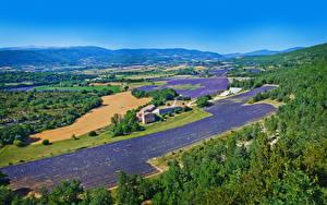 Картинка Франция Пейзаж Поля Лаванда Здания Холмы Valensole