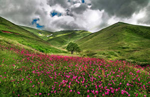 Картинки Франция Пейзаж Луга Холмы Облака Трава Savoie
