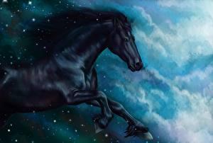 Обои Лошади Рисованные Черный Бег Животные