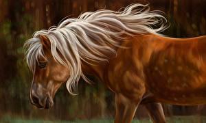Картинки Лошади Рисованные Коричневый