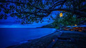 Фотография Индонезия Тропики Курорты Побережье Ветка Ночь Bali Природа