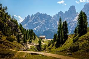 Обои Горы Пейзаж Италия Альпы Тропинка Деревья Dolomites