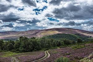 Фото Шотландия Небо Леса Облака Холмы Природа
