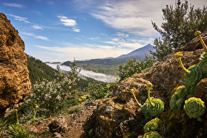 Фотографии Испания Небо Канарские острова Tenerife Природа