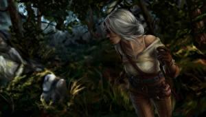 Обои The Witcher Блондинка Cirilla Игры Девушки Фэнтези картинки