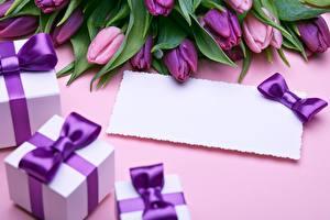 Фотографии Тюльпаны Шаблон поздравительной открытки Подарок Фиолетовый Цветы