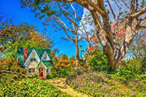 Фотография США Сады Здания Калифорния Деревья Кусты HDRI South Coast Botanic Garden Природа