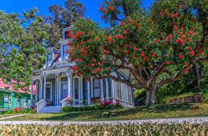 Фото Штаты Дома Ретро Калифорния Дизайн Деревья HDR Heritage Square Museum Города