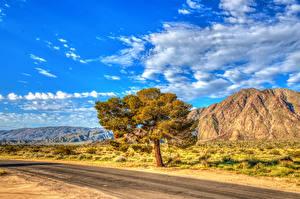 Фото Штаты Парки Дороги Небо HDRI Калифорния Деревья Облака Anza-Borrego State Park Природа
