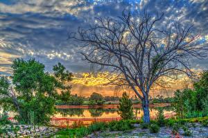 Фото США Рассветы и закаты Озеро Небо Калифорния Деревья Облака HDR Lake Marchado Природа
