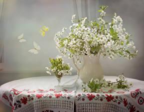 Обои Букеты Бабочки Ваза Ветвь Стол Цветы