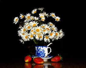 Фотография Букет Ромашки Клубника На черном фоне Чашка Цветы Еда
