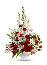 Картинка Букеты Розы Гладиолусы Лилии Белый фон Ваза